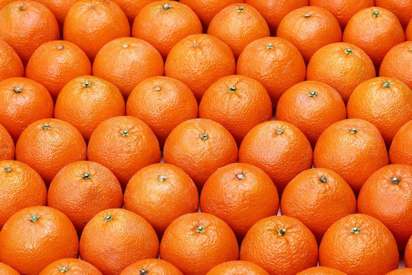 Laranjas: as frutas são parte integrante de uma alimentação saudável | Foto: Michael Stern/Creative Commons